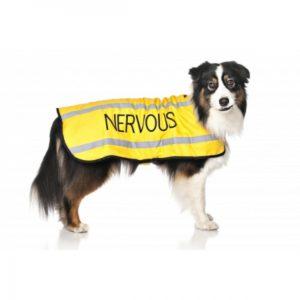 42978_friendly_dog_collars_hundedekken_nervous_1